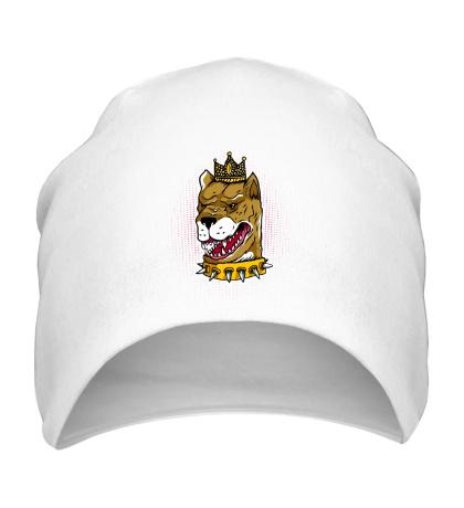 Шапка Пес король