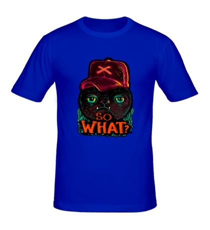 Мужская футболка So what?