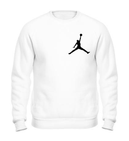 Свитшот Air Jordan 23