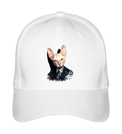 Бейсболка Mr Cat