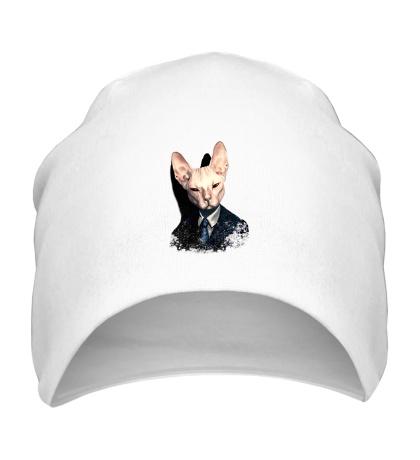 Шапка Mr Cat