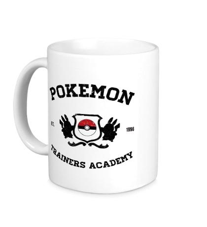 Керамическая кружка Pokemon Trainers Academy