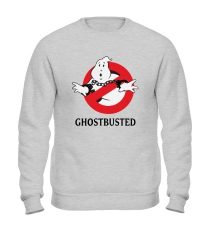 Свитшот Ghostbusted