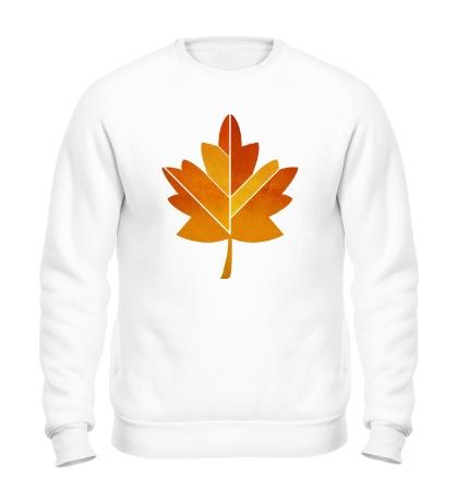 Свитшот Осенний клен