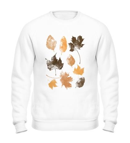 Свитшот Осенние Листья