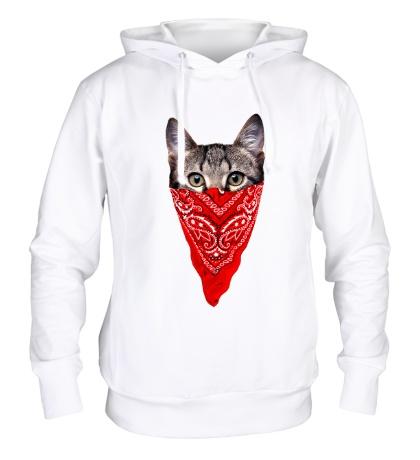 Толстовка с капюшоном Гангстер кот