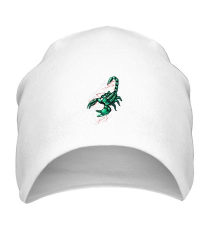 Шапка Изумрудный скорпион