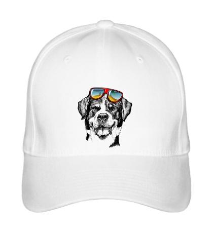 Бейсболка Крутой пёс