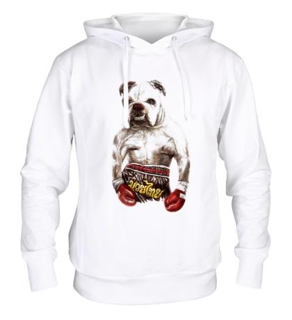 Толстовка с капюшоном Пёс-боксёр