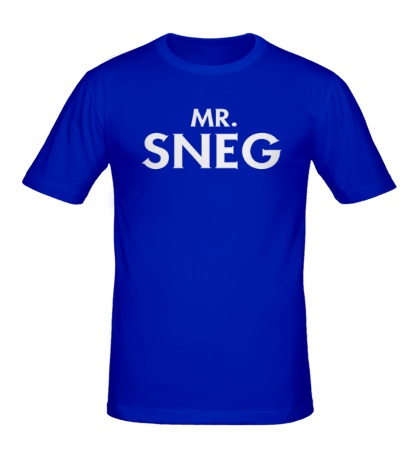 Мужская футболка Mr. Sneg