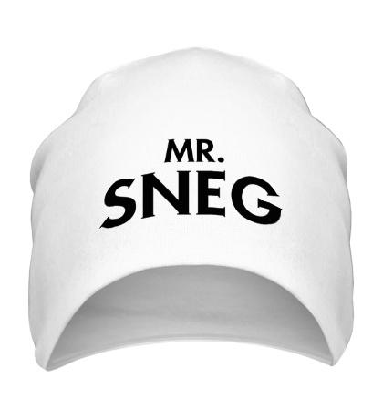 Шапка Mr. Sneg