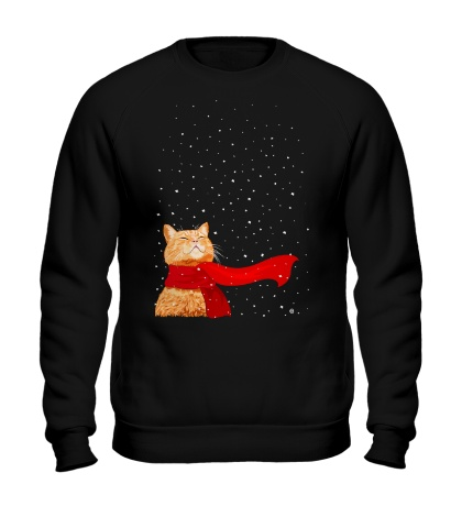 Свитшот Зимний кот
