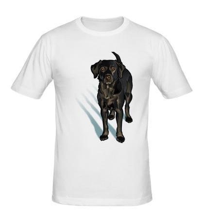 Мужская футболка Черный лабрадор