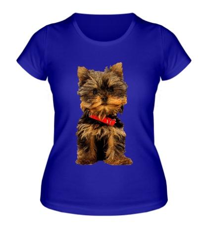Женская футболка Йоркширский терьер