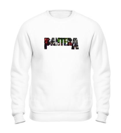 Свитшот Pantera