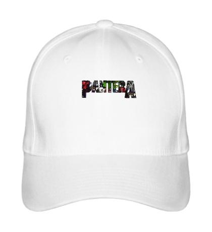 Бейсболка Pantera