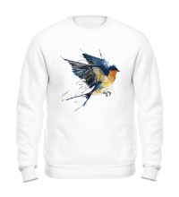 Свитшот Birds