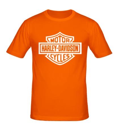 Мужская футболка Harley-Davidson