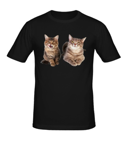Мужская футболка Кошка и котёнок