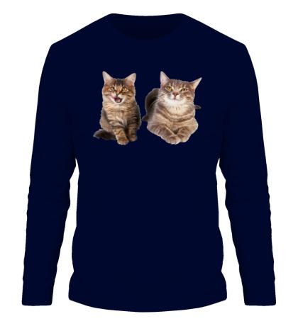 Мужской лонгслив Кошка и котёнок