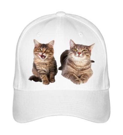 Бейсболка Кошка и котёнок