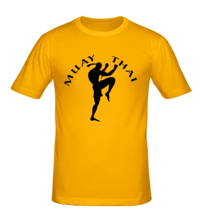 Мужская футболка Art of Muay Thai