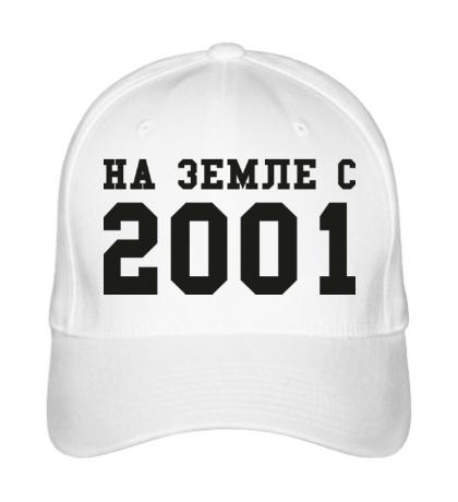 Бейсболка На земле с 2001