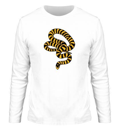 Мужской лонгслив Полосатая змея