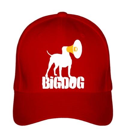 Бейсболка Bigdog