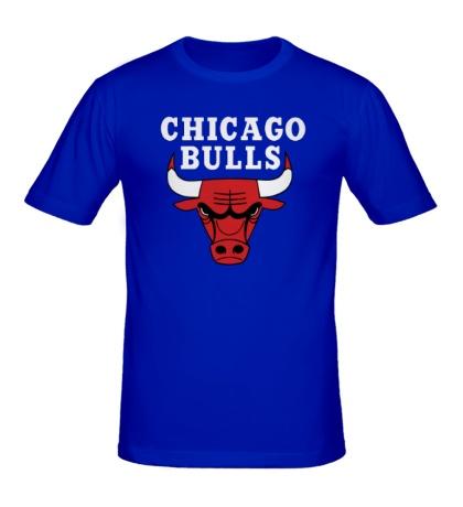 Мужская футболка Chicago Bulls