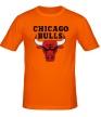 Мужская футболка «Chicago Bulls» - Фото 1
