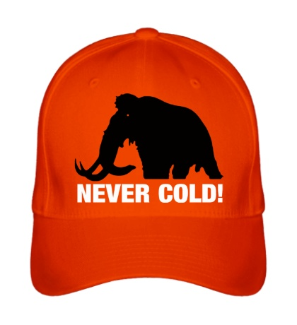 Бейсболка Mamont never cold!