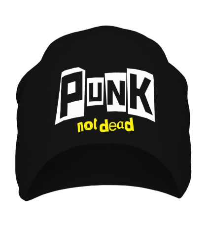 Шапка Punk not Dead Text