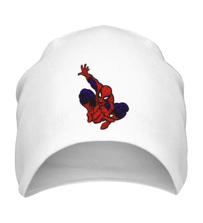 Шапка Fast Spider-Man