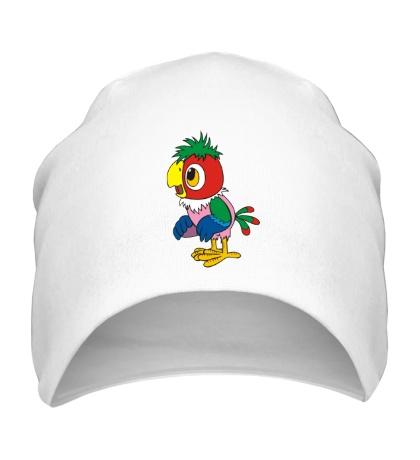 Шапка Попугай Кеша