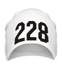 Шапка 228