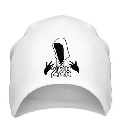 Шапка 228 Репер