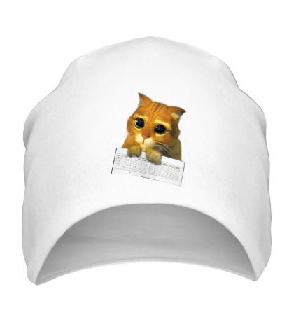 Шапка Котёнок с зачёткой