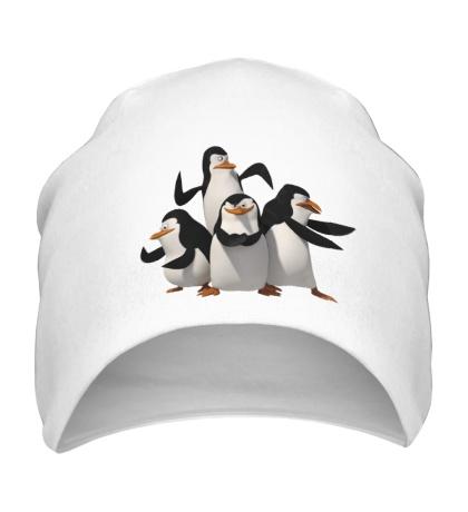 Шапка Пингвины Мадагаскара