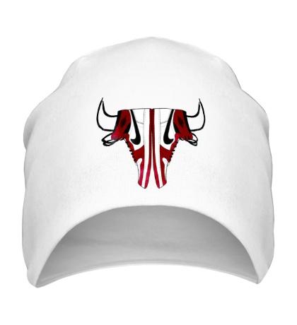 Шапка Air Jordan Bull