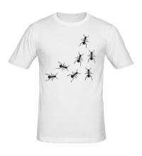 Мужская футболка Бегущие муравьи