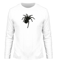 Мужской лонгслив Ползучий паук