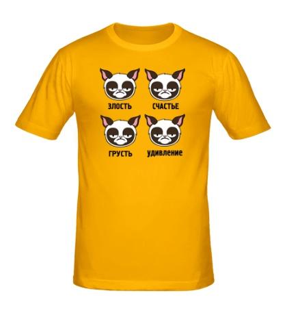 Мужская футболка Эмоции грустного кота