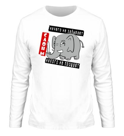 Мужской лонгслив Слоны никого не прощают
