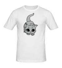 Мужская футболка Глазастый котенок